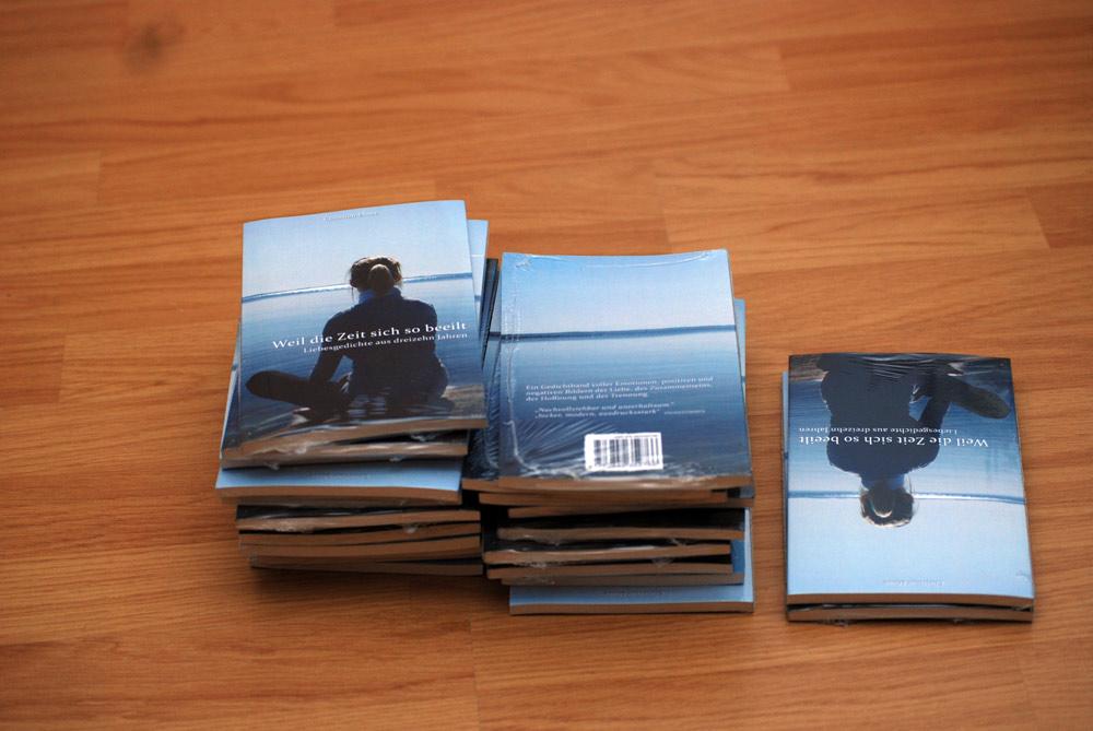 """Freitag der 13.: Mein drittes Buch ist nun als """"Jubiläums-Edition"""" da. (Kostenlos mit Amazon-Prime*)"""